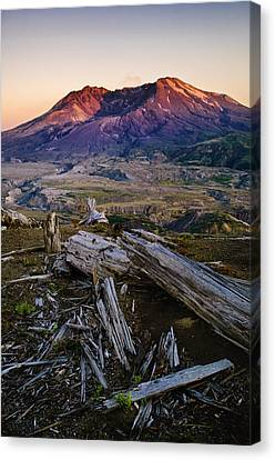 Mount St. Helens Sunset Canvas Print by Greg Vaughn - Printscapes