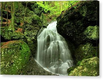 Mount Toby Roaring Falls Canvas Print