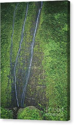 Mount Waialeale Canvas Print