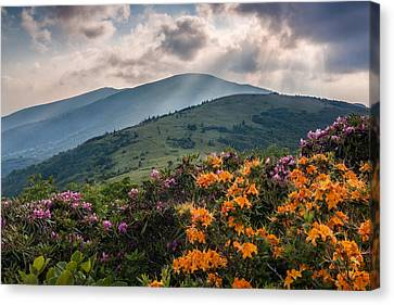 Mountain Aflame Canvas Print by Rob Travis