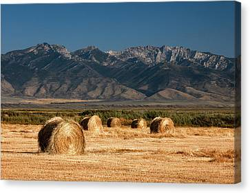 Mountain Bales Canvas Print by Todd Klassy