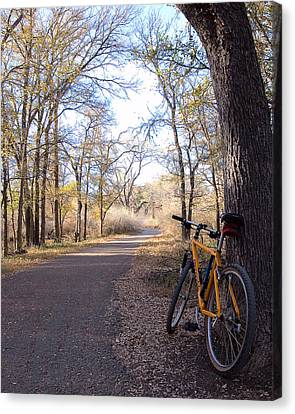 Mountain Bike Trail Canvas Print