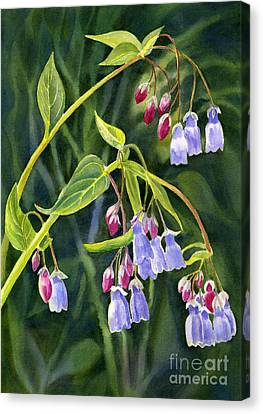 Close Up Canvas Print - Mountain Bluebells With Background by Sharon Freeman