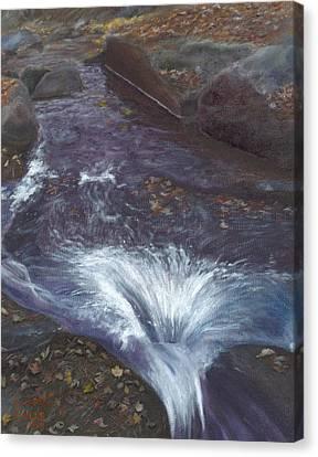 Mountain Brook Canvas Print by Laurel Ellis