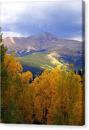Mountain Fall Canvas Print by Marty Koch