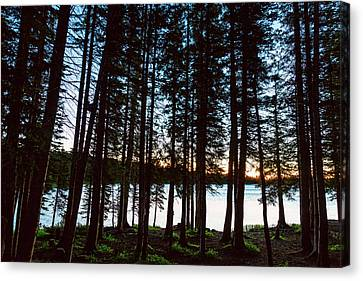 Canvas Print featuring the photograph Mountain Forest Lake by James BO Insogna