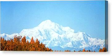 Canvas Print featuring the photograph Mountain by Judyann Matthews