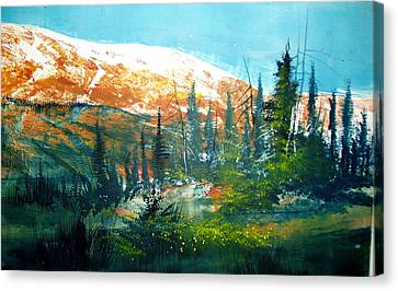Mountain Light Canvas Print by Robert Carver