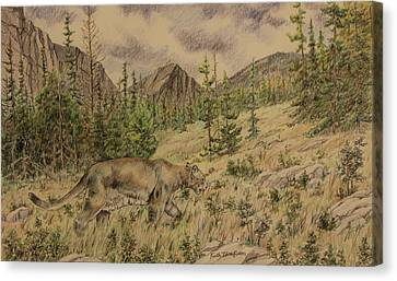 Mountain Lion On The Hunt Canvas Print by Keith Thompson
