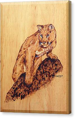 Canvas Print featuring the pyrography Mountain Lion by Ron Haist