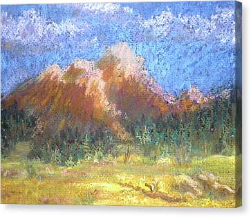 Mountain Meadow 2 Canvas Print by Curt Peifley