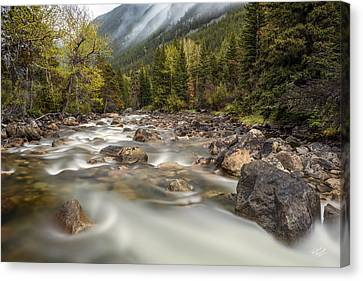 Mountain Mist Canvas Print by Leland D Howard