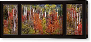 Mountain Of Color Canvas Print by Leland D Howard