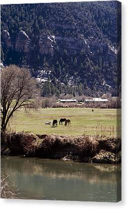 Canvas Print featuring the photograph Mountain Pasture Vertical by Lorraine Devon Wilke