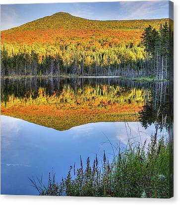 Mountain Reflections Square Canvas Print
