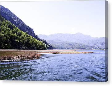 Mountain River Canvas Print by Svetlana Sewell