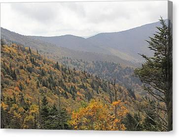 Mountain Side Long View Canvas Print