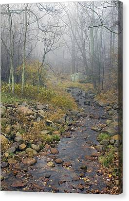 Canvas Print featuring the photograph Mountain Stream by Alan Raasch