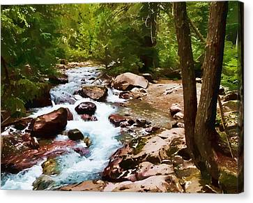 Mountain Stream Canvas Print by Dan Dooley