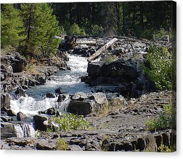 Mountain Stream Canvas Print by Dave Clark