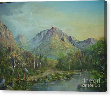 Mountain Stream Canvas Print by Rita Palm