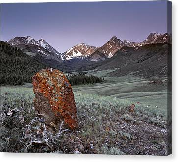 Mountain Textures And Light Canvas Print by Leland D Howard
