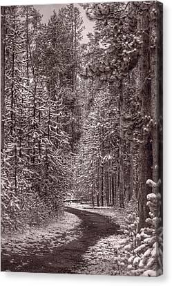 Mountain Trail Yellowstone Bw Canvas Print