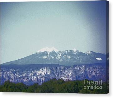 Mountain View Canvas Print by Debbie Wells