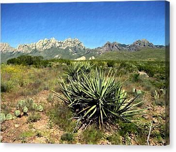 Mountain View Las Cruces Canvas Print by Kurt Van Wagner