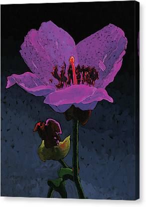 Mountain Wildflower Canvas Print