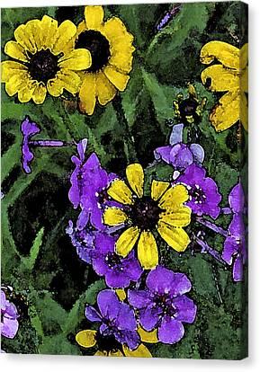 Mountain Wildflowers Canvas Print by Debra Wilkinson