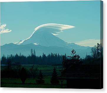 Mountain Wings Canvas Print