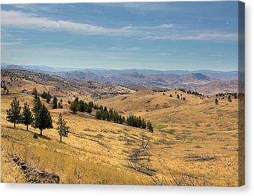 Canvas Print - Mountainous Terrain In Central Oregon by David Gn