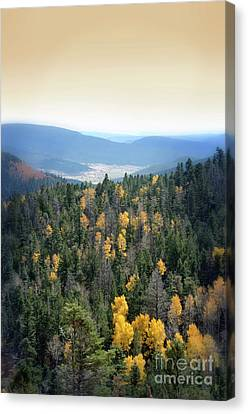 Mountains And Valley Canvas Print by Jill Battaglia