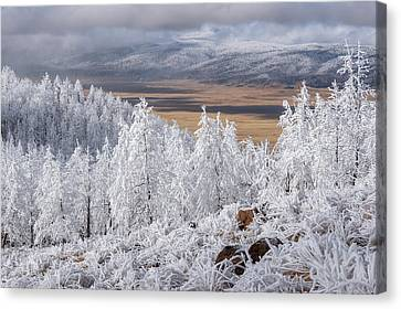 Mountains Of Rime Canvas Print by Andrew Gordon