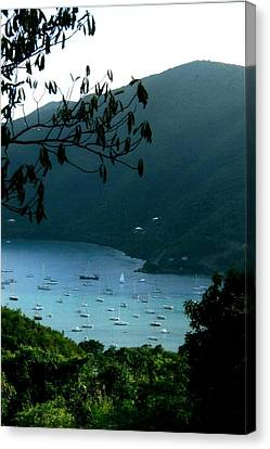 Mountainside Coral Bay Canvas Print by Robert Nickologianis