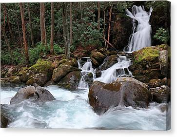 Mouse Creek Falls During Winter Canvas Print by Carol R Montoya
