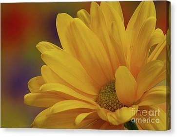Movement In Yellow Canvas Print by Christine Amstutz