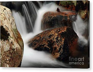 Canvas Print featuring the photograph Moving Along by Darren Fisher