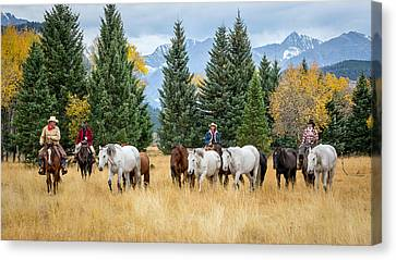 Moving The Herd Canvas Print