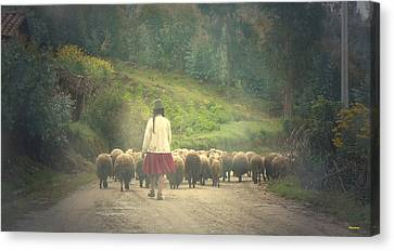 Moving To Greener Pastures Ankawasi Peru Canvas Print
