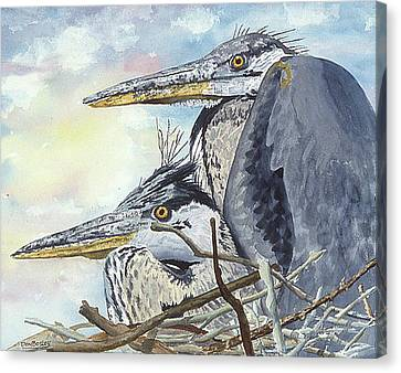 Mr And Mrs Bird Canvas Print by Don Bosley