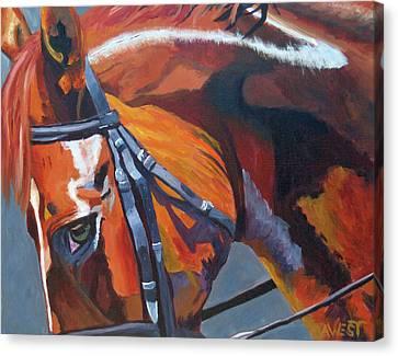 Chestnut Horse Canvas Print - Mr. Big Stuff by Anne West
