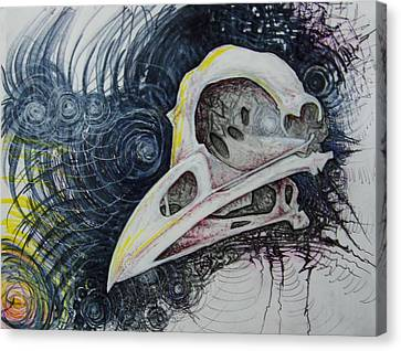 Mr. Bones Crow Canvas Print by Lachlan Henry