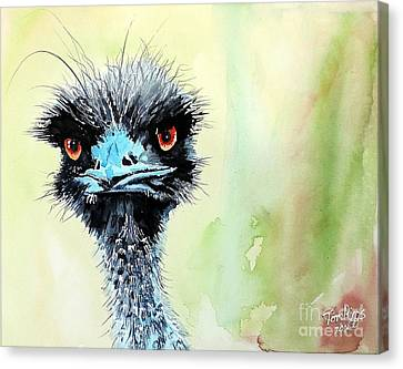 Mr. Grumpy Canvas Print