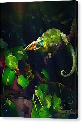 Canvas Print featuring the photograph Mr. H.c. Chameleon Esquire by Sharon Jones