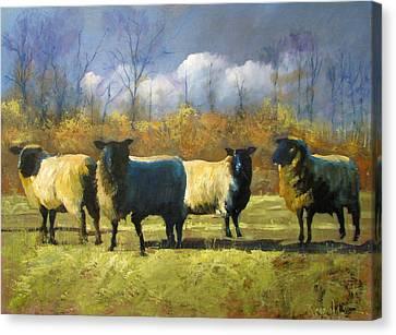 Mr. Shew's Sheep Canvas Print by John Reynolds