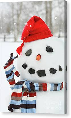 Frosty Canvas Print - Mr. Snowman by Sandra Cunningham