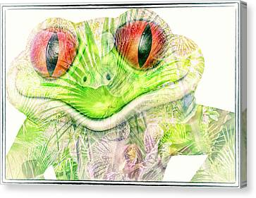 Smiling Canvas Print - Mr Ribbit by Pamela Williams