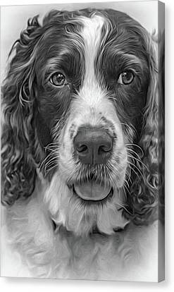 Ms Kaya 3 - Paint Bw Canvas Print by Steve Harrington